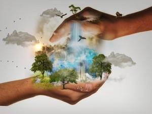 השפעה על הסביבה